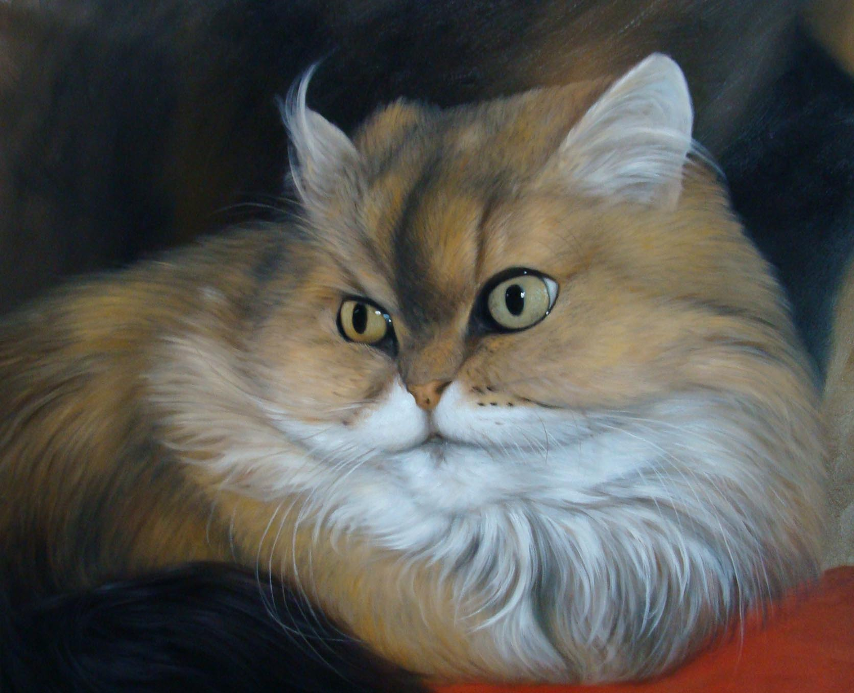 Katzengemälde Leinwand