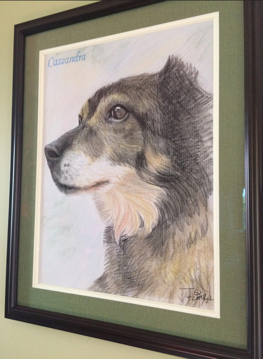 dog portraits - color pencil drawing