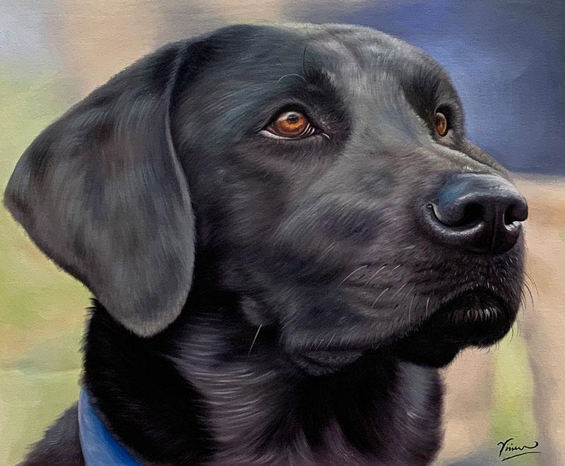 custom art focused dog