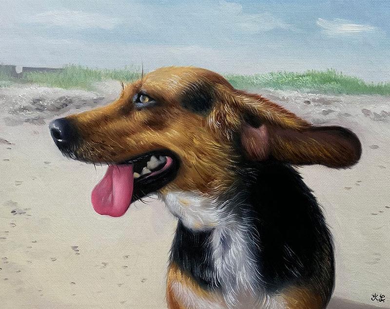 dog portrait happy pet