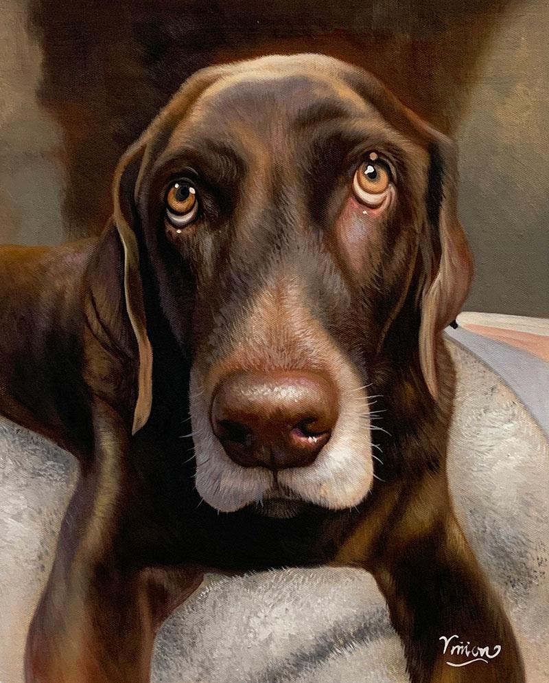 Treue Hundeaugen gemalt in Öl
