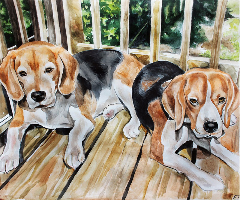 custom watercolor painting of two beagles on the balcony