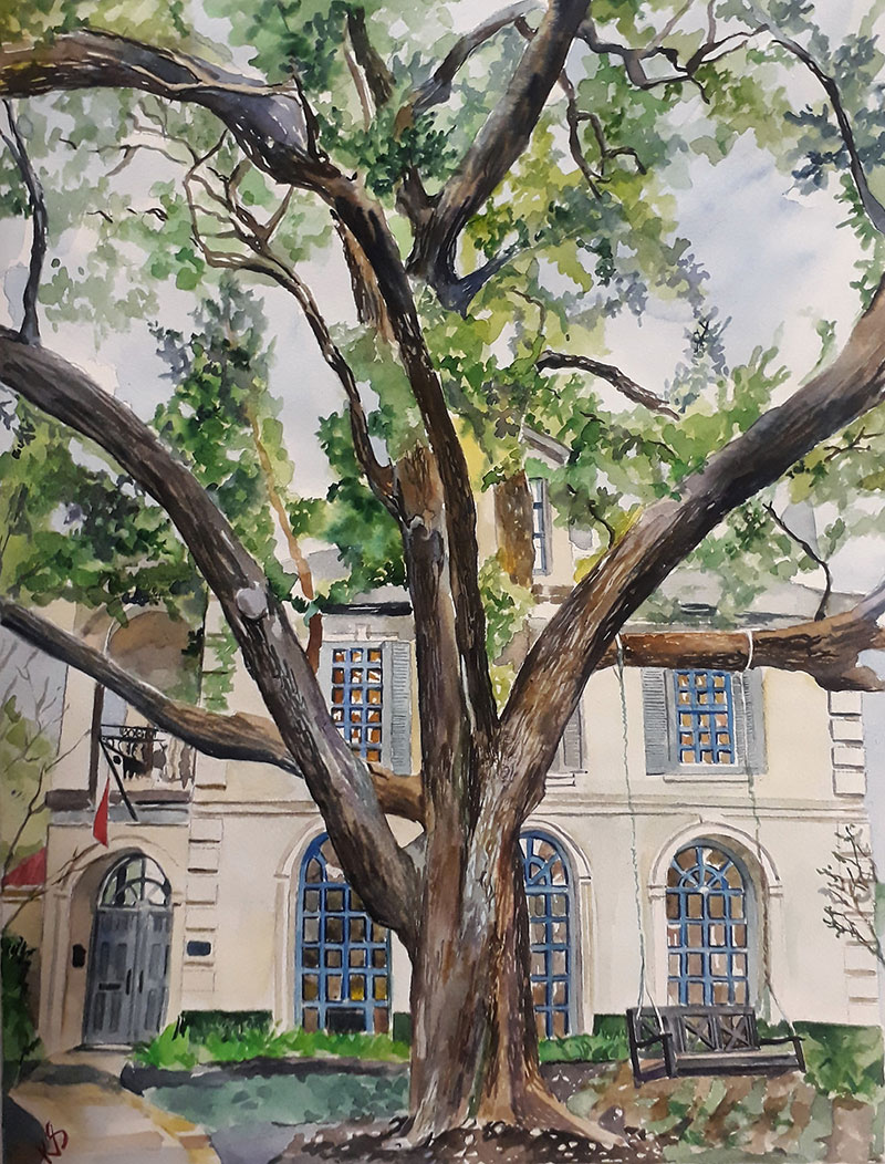 custom watercolor painting of house covered by a tree