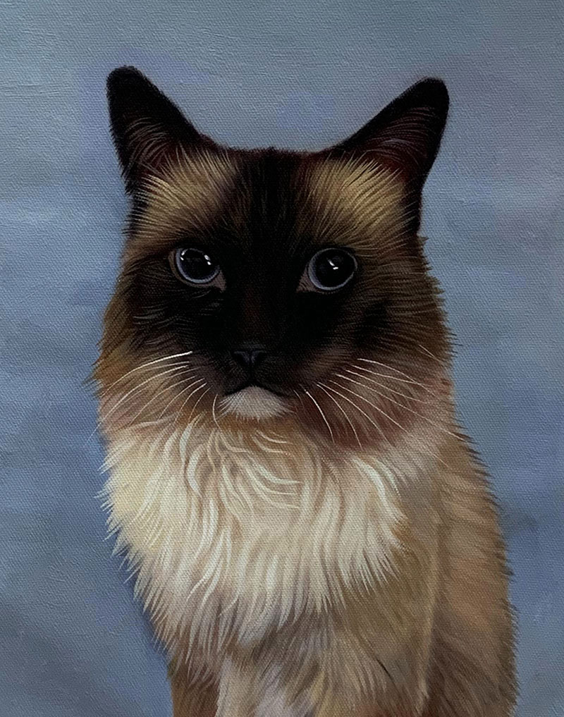 Custom cat painting in oil
