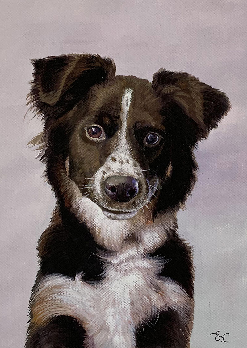 Custom dog painting in pastel
