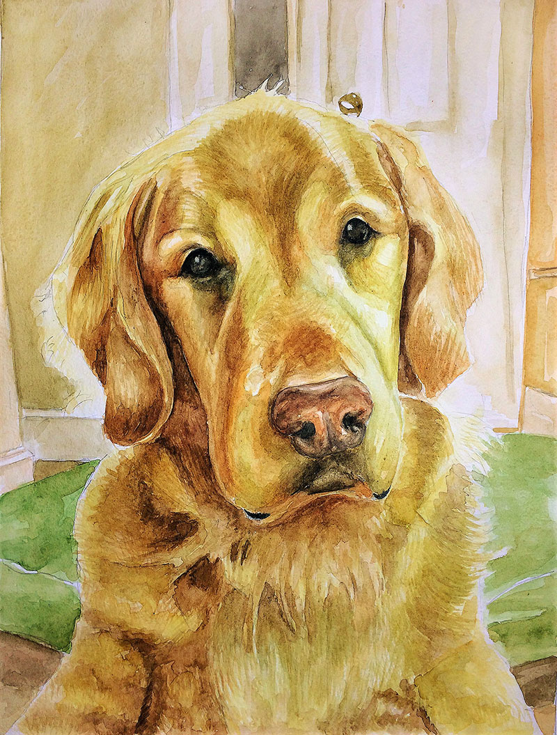 Custom watercolor painting of a dog