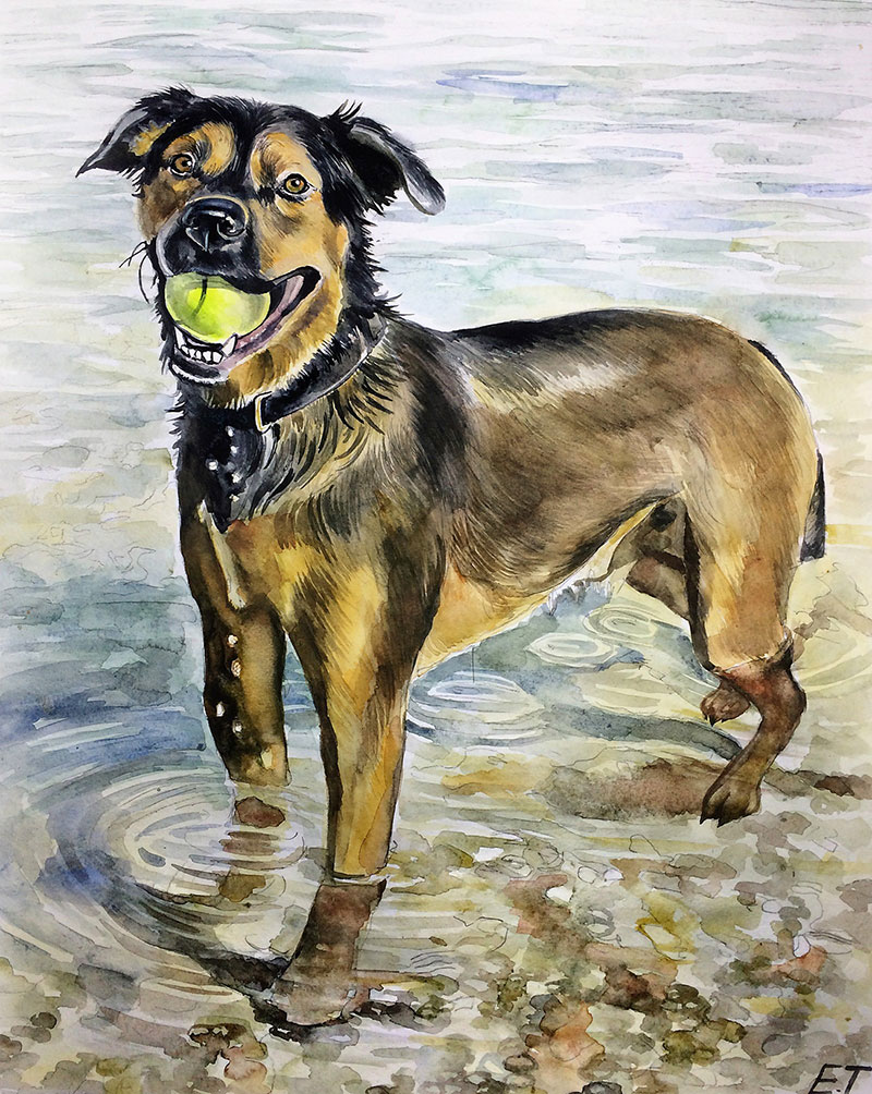 Custom watercolor painting of a dog with ball