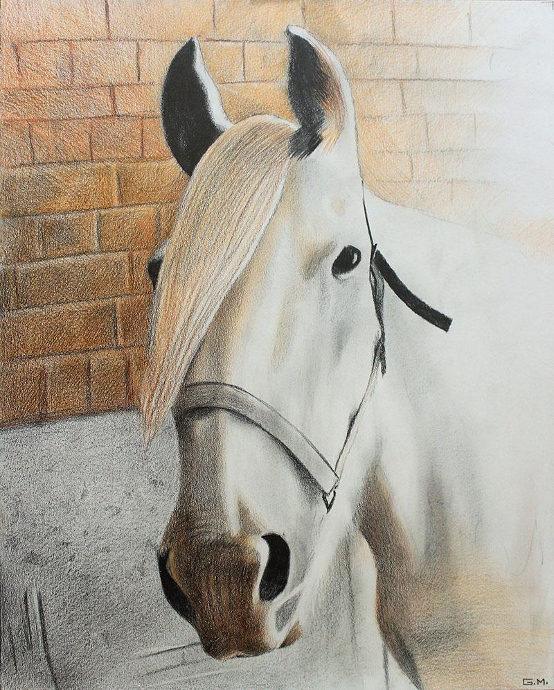 Custom color pencil drawing of a horse