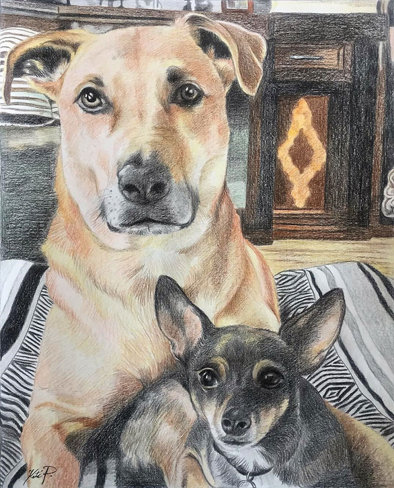 Custom color pencil drawing of two dogs