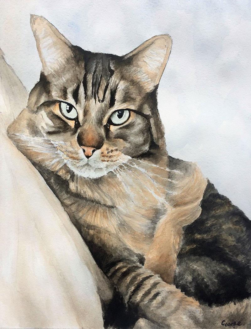 Custom watercolor drawing of a cat