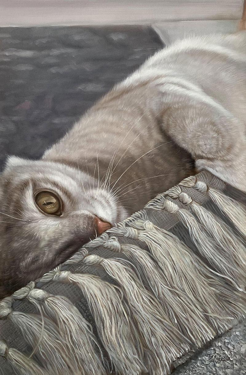 Portrait einer  verspielten Katze
