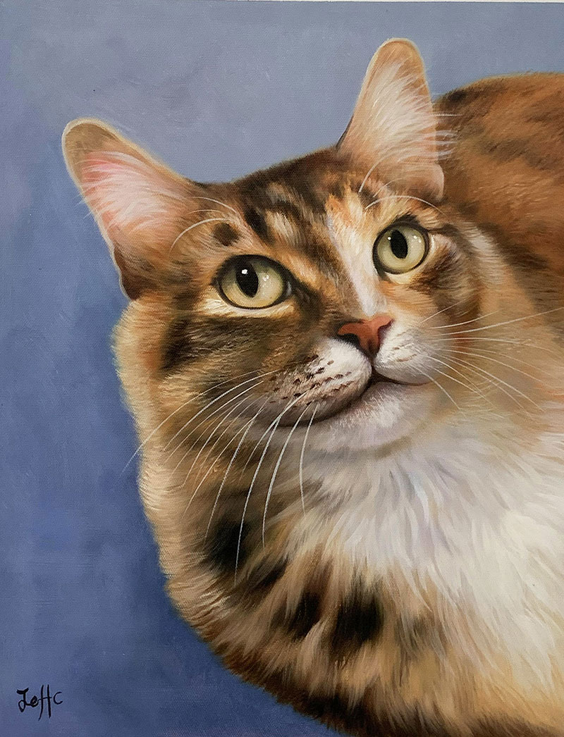 Personalized oil painting of a cat with the solid background