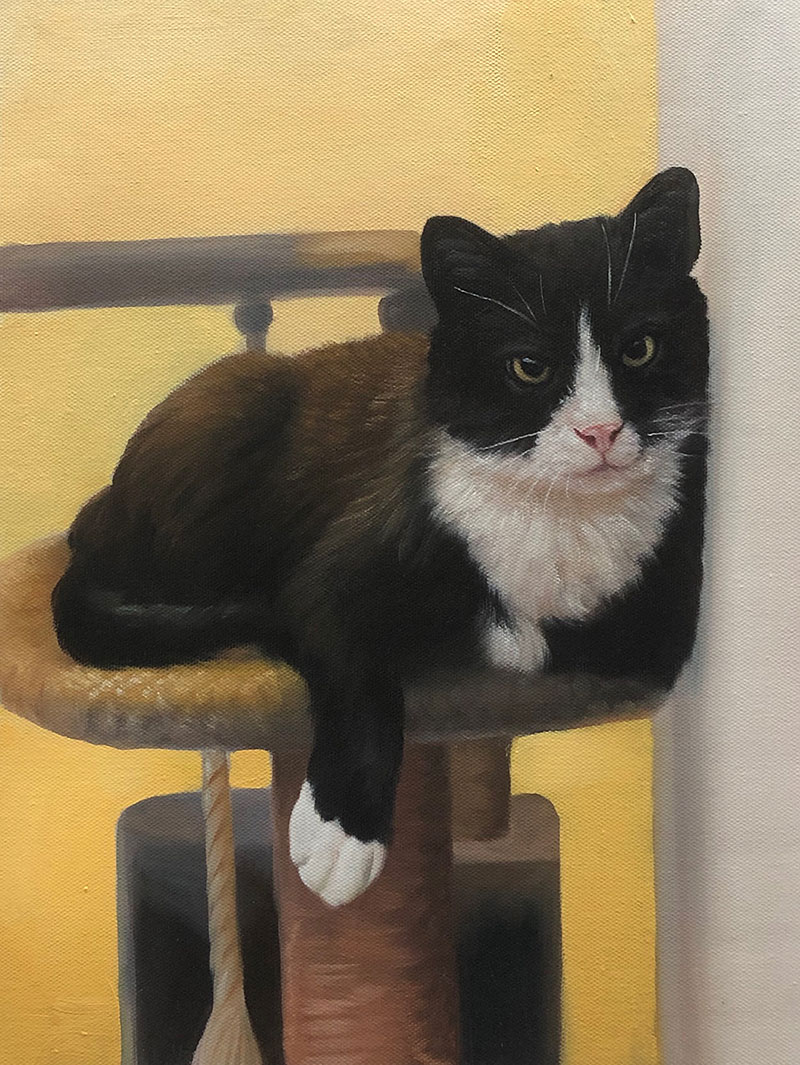 Custom oil painting of a cat