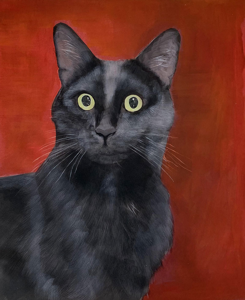 photo to pastel painting black cat with a red hint