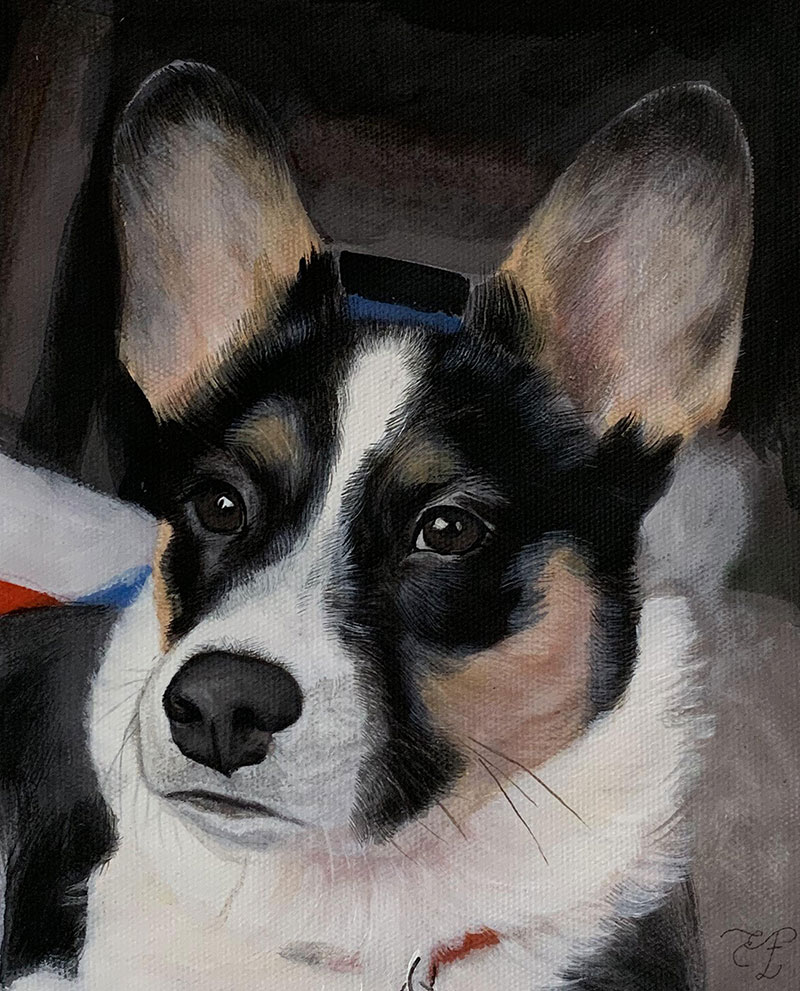picture to pastel portrait of dog