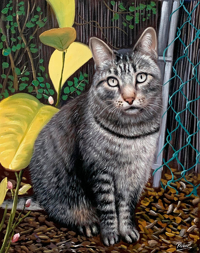 Custom close up oil painting of a cat