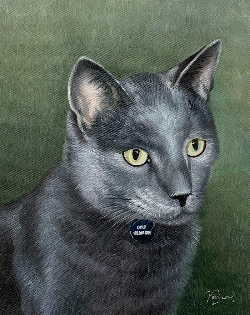 Beautiful oil painting of a cat with a solid background
