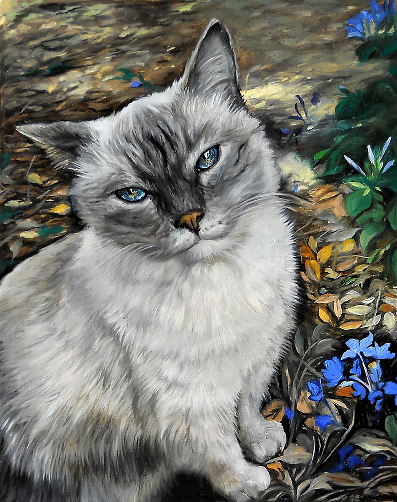 Custom handmade oil artwork of a cat