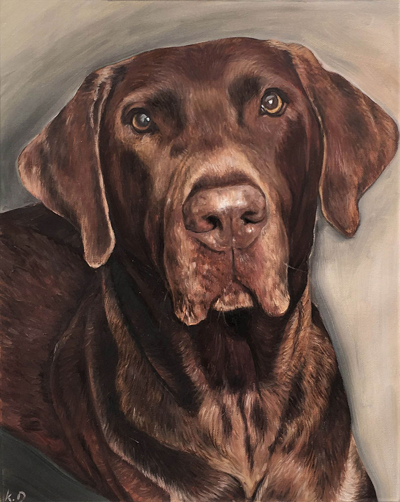 custom oil portrait of chocolate lab