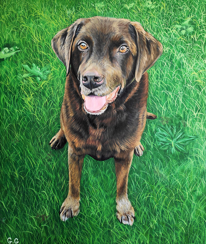 handmade custom oil portraits of a brown dog