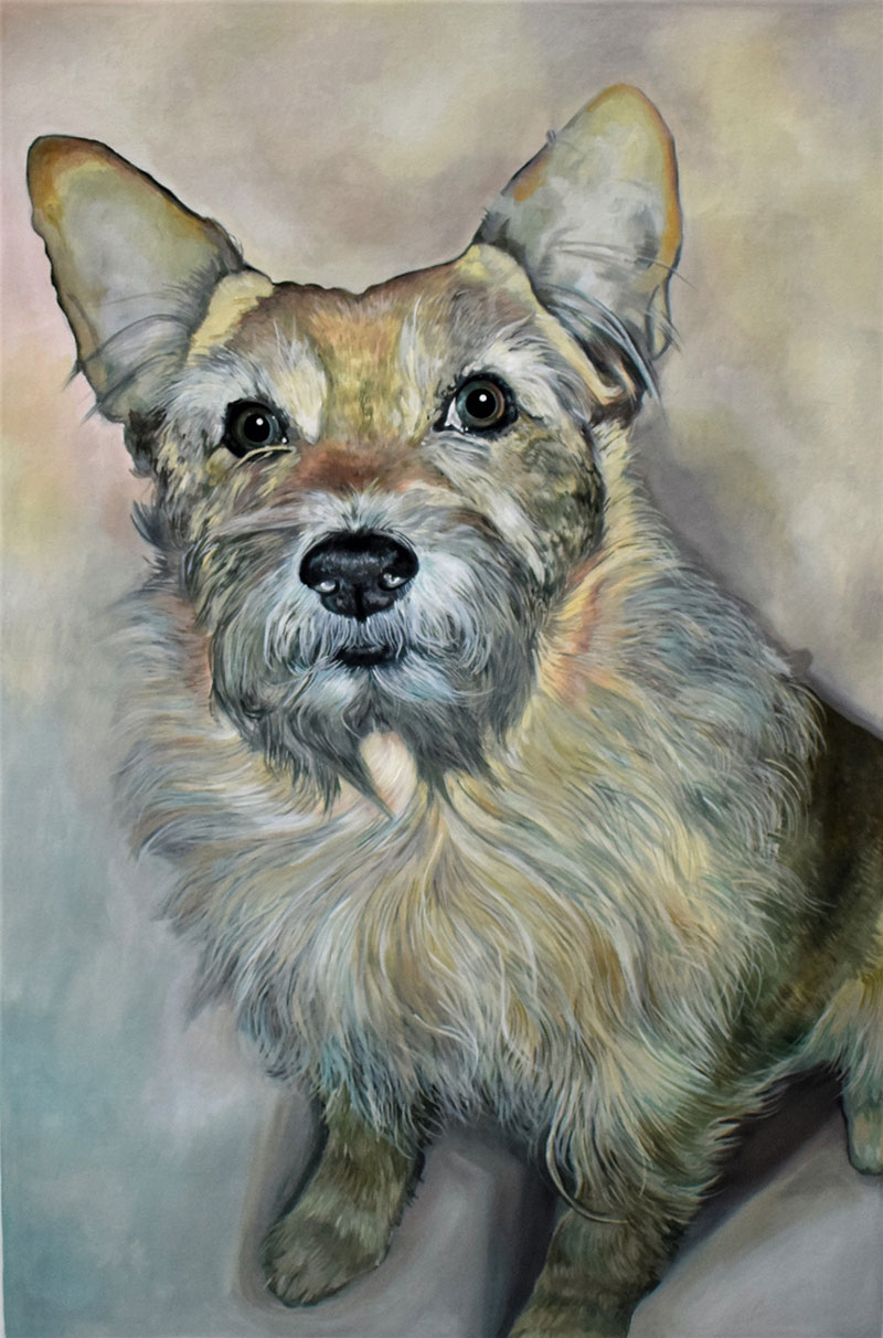 Beautiful oil painting of a dog with a solid background