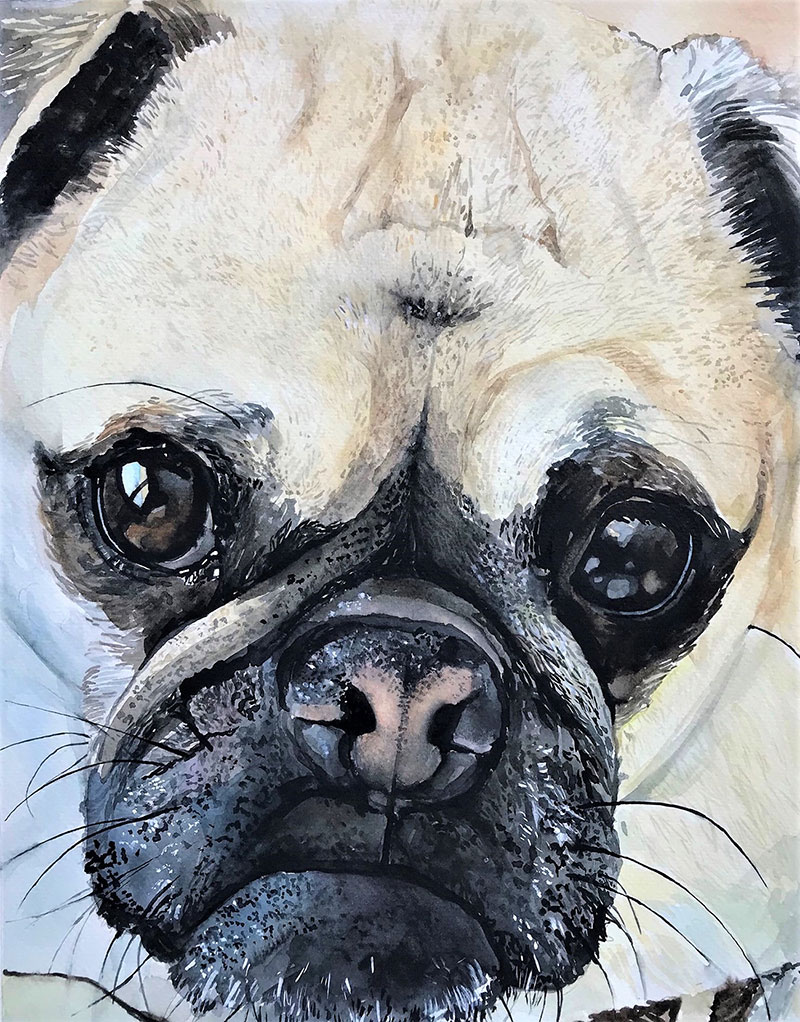 Close up watercolor painting of a dog
