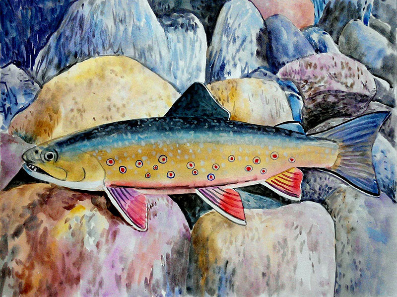 custom watercolor painting of  a fish underwater