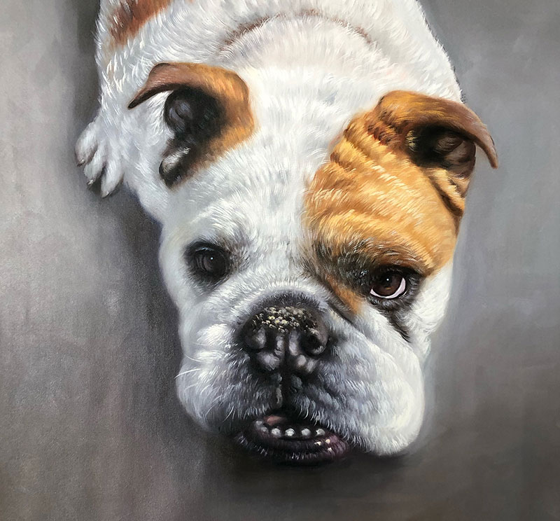 Close up oil painting of a dog