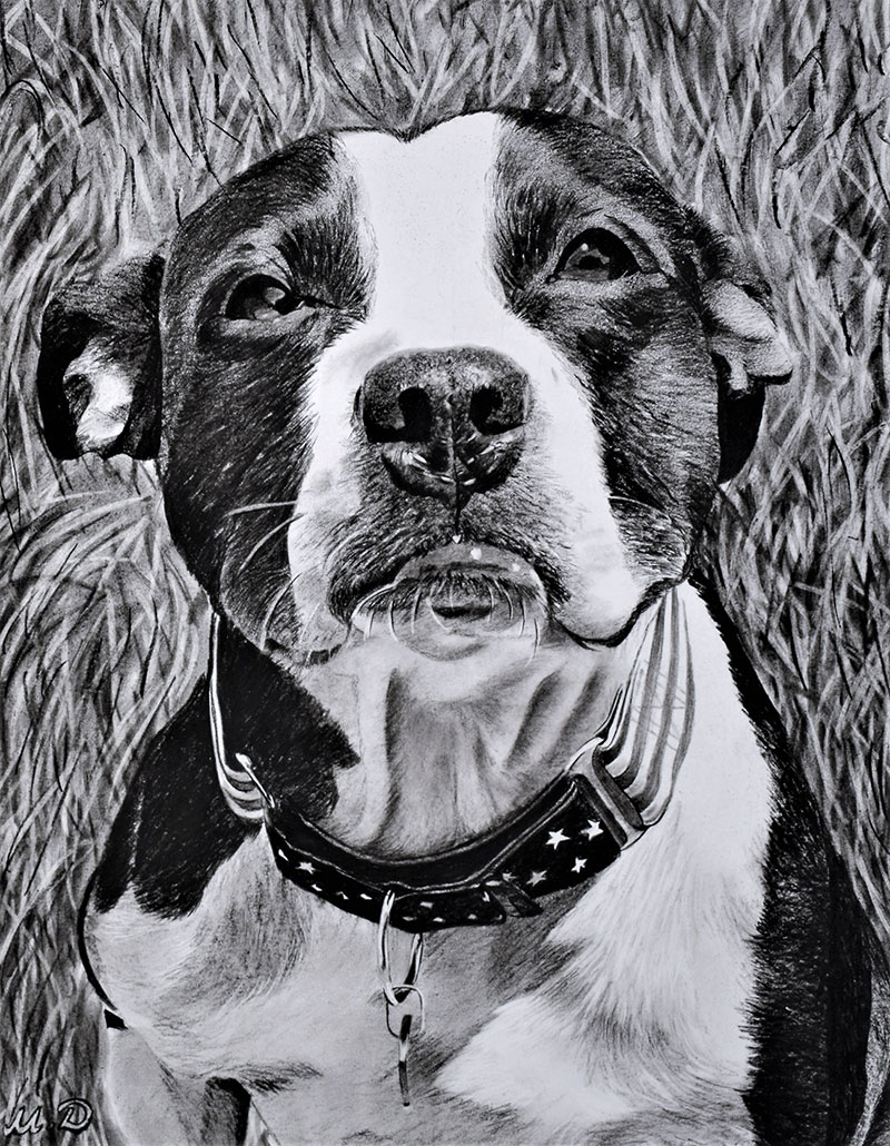 Custom charcoal painting of a dog