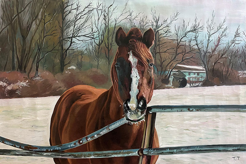 Beautiful oil painting of a horse in the nature