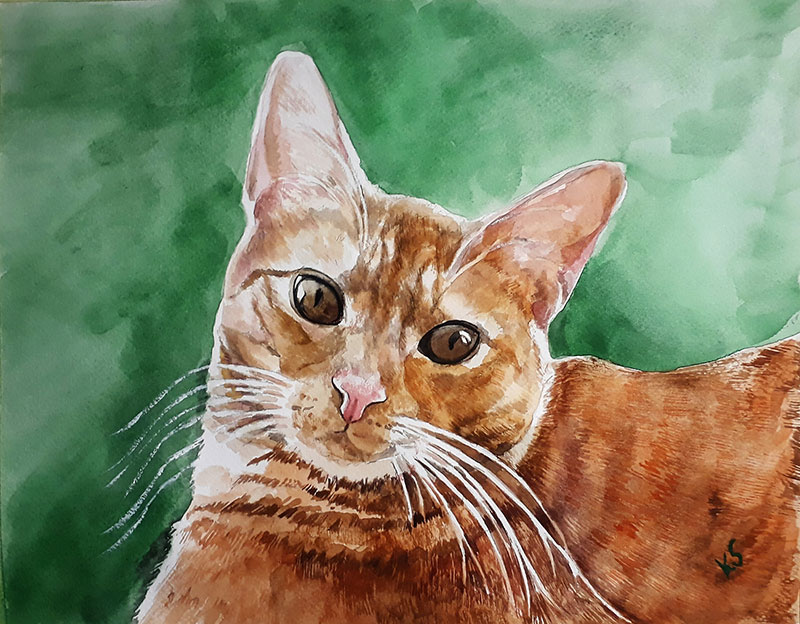 Beautfil watercolor drawing of a cat with green background