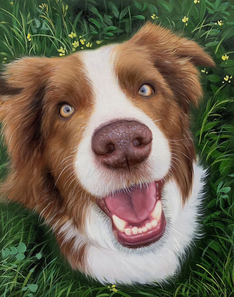 happy dog portrait