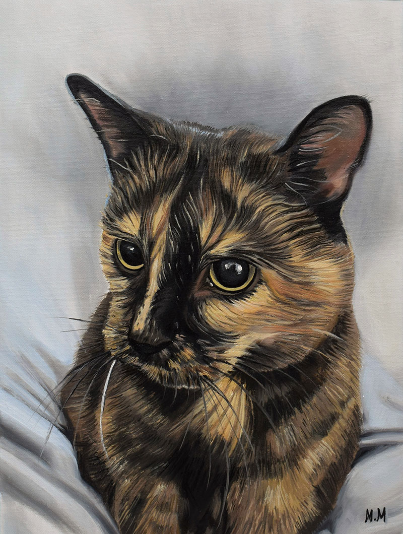 custom oil painting of a blonde and black cat with big eyes