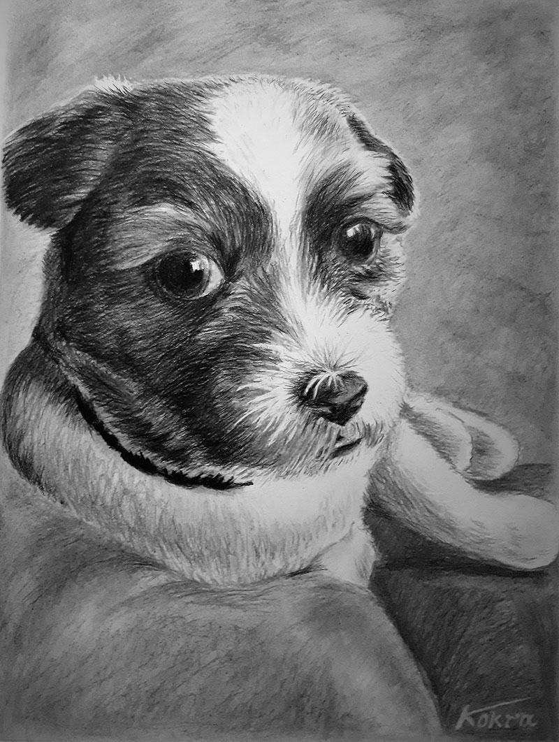artwork of a pet