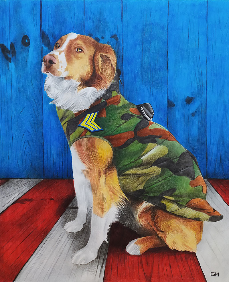 Gorgeous color pencil painting of a dog