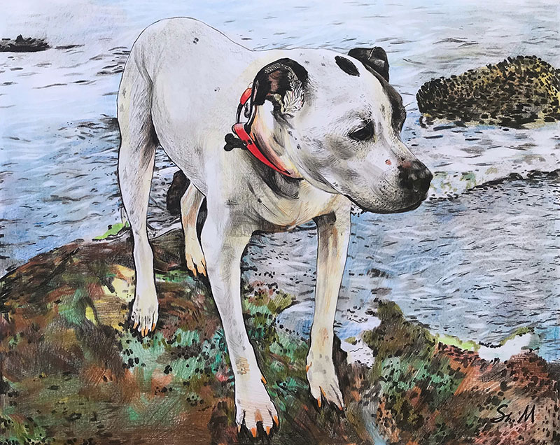 Beautiful handmade color pencil painting of a dog