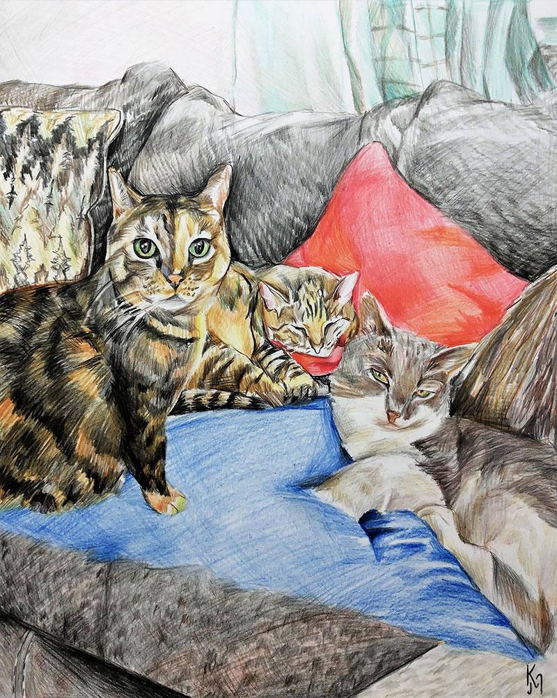 Handmade color pencil art of cats