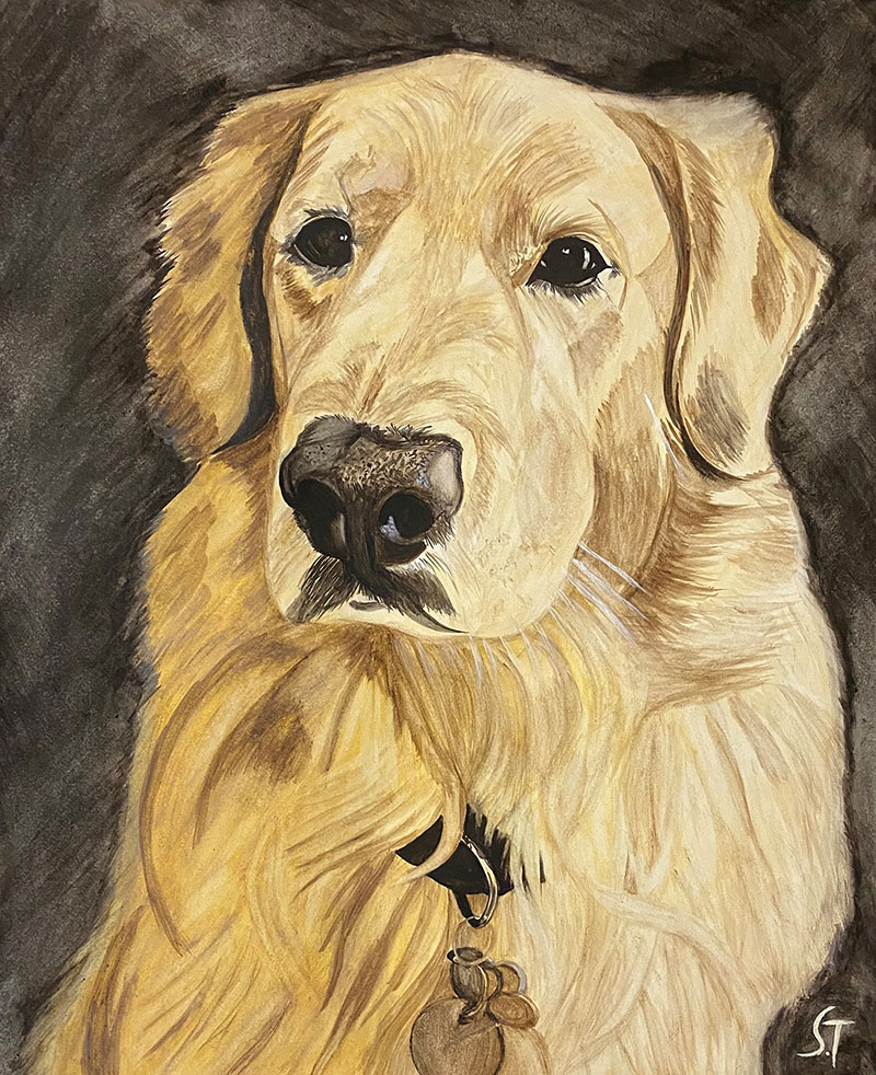 Custom close up watercolor painting of a dog