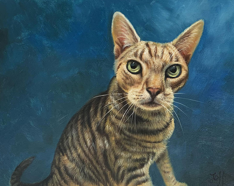 Custom oil painting of a cat with a blue background