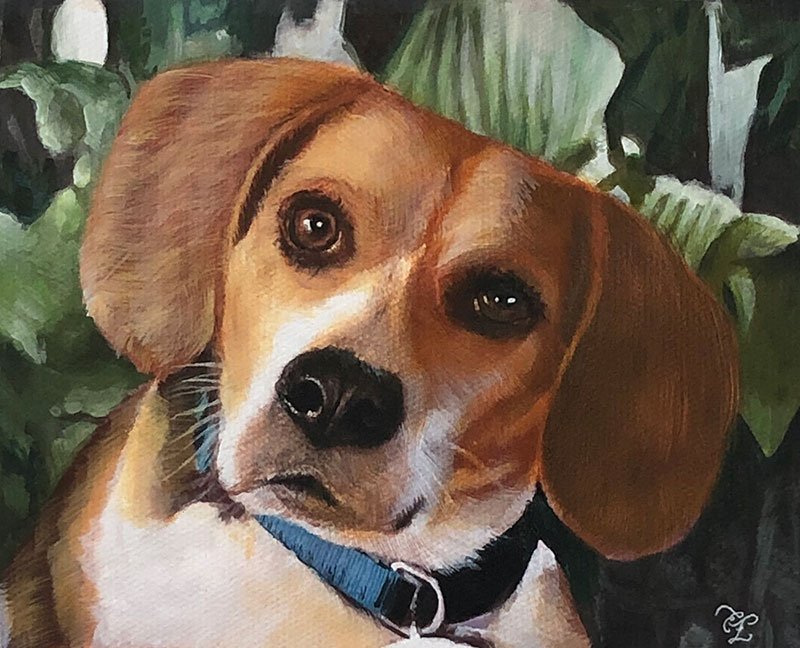 custom pastel painting of beagle