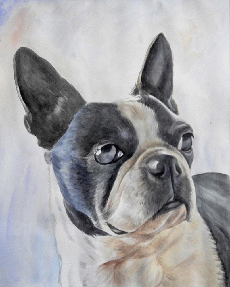 custom dog portrait in watercolor