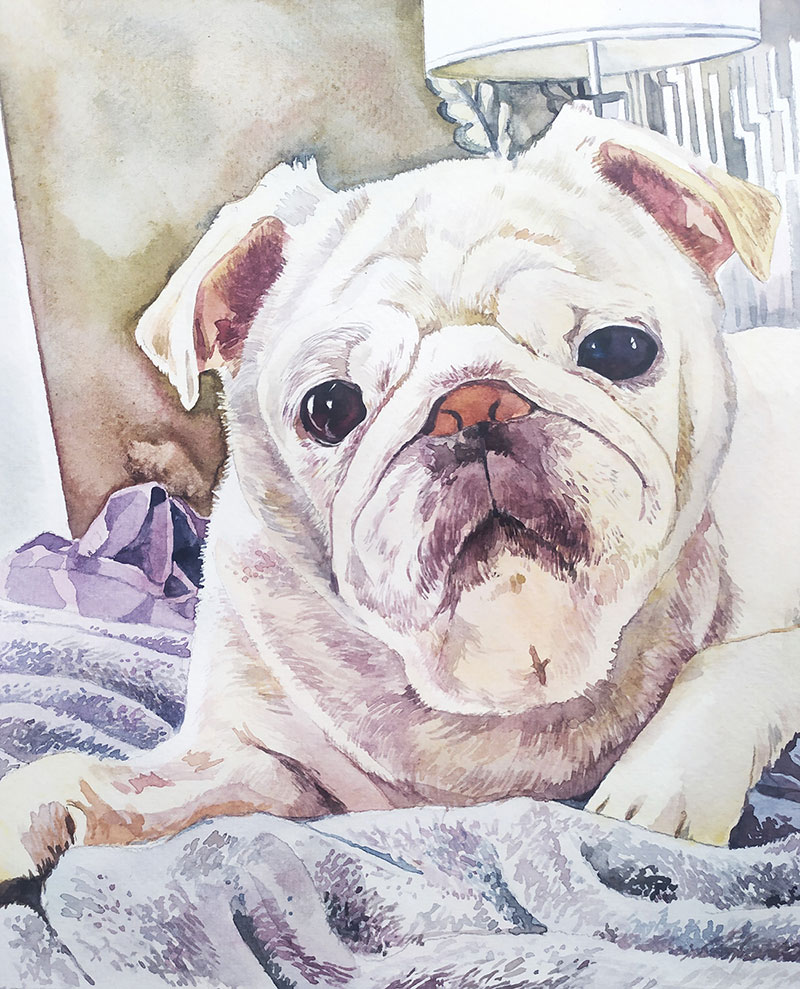 Beautiful watercolor painting of a dog