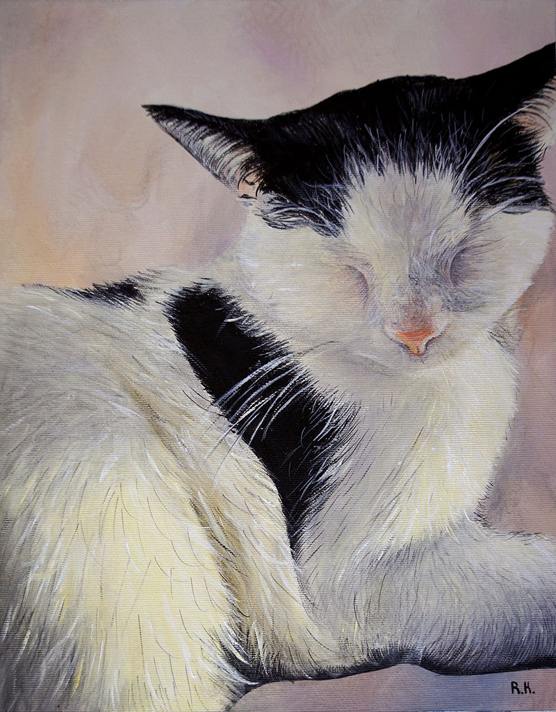 Custom acrylic painting of a cat with a solid background