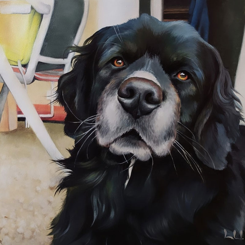 Custom close up oil painting of a black dog
