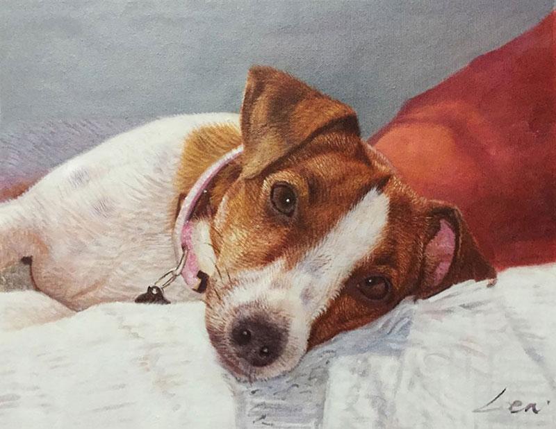 lovely dog portrait