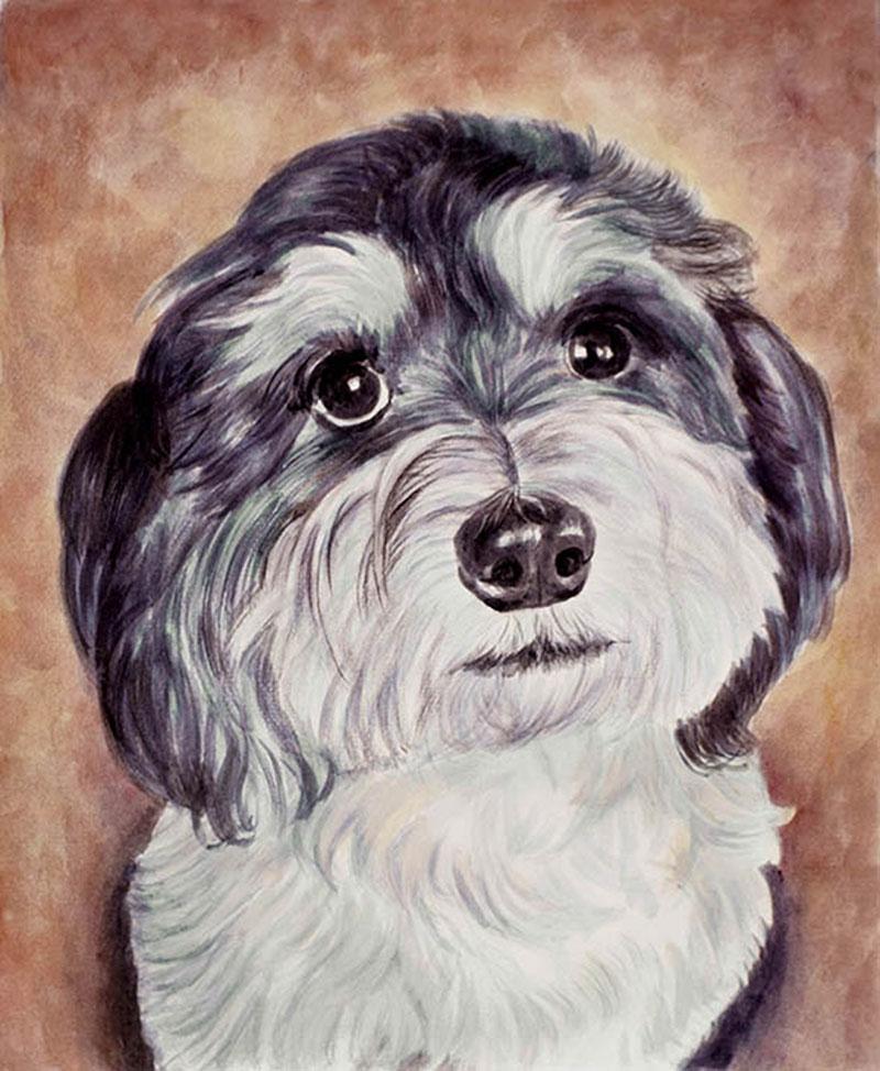 Ricordo cagnolino ritratto ad acquerello da fotografia