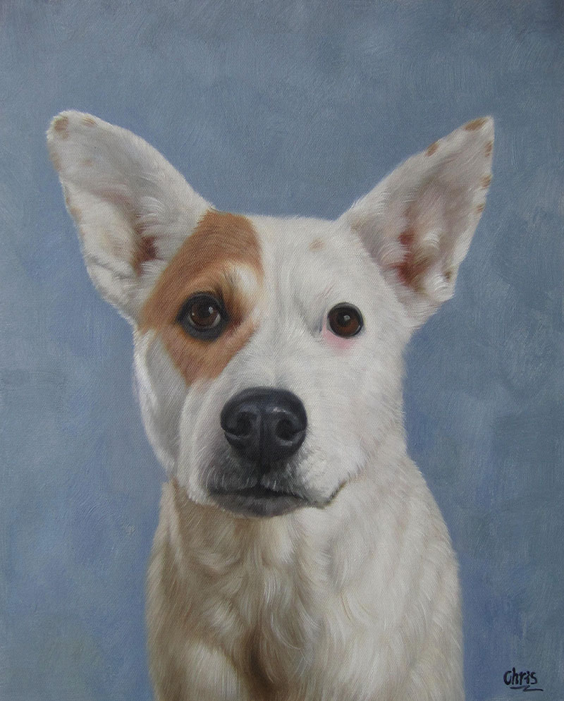 dog portrait custom art