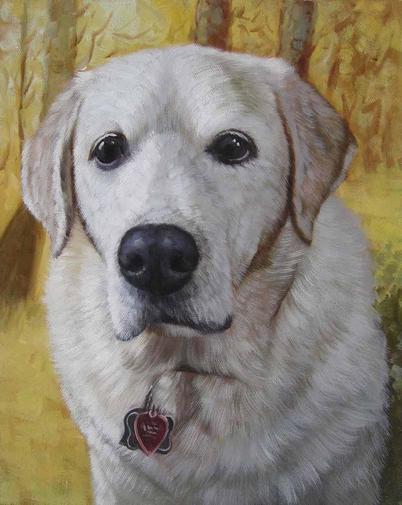 Oil painting white labrador