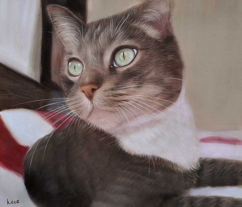 custom oil painting of a grey cat with light green eyes