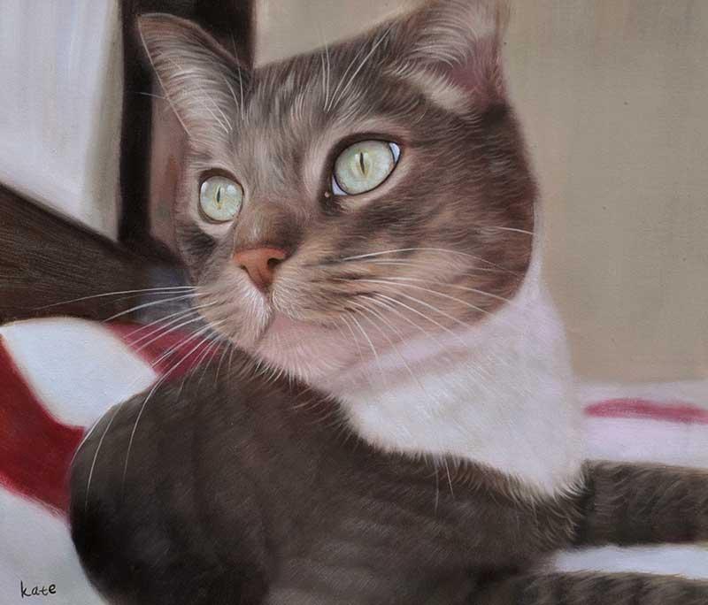 Ritratto gatto ad olio da fotografia